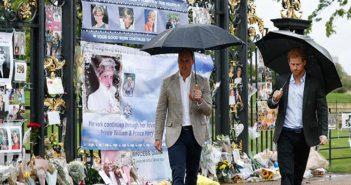 Diana-Twentieth Anniversary